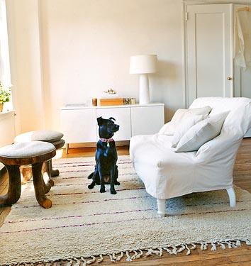 living-room_dog-white-brown-cream-wood-floors_pets_domino-mag