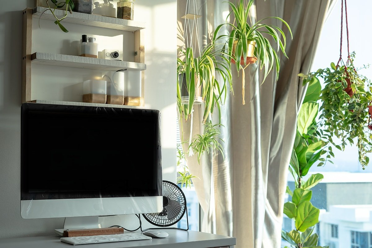 Bright window in home office