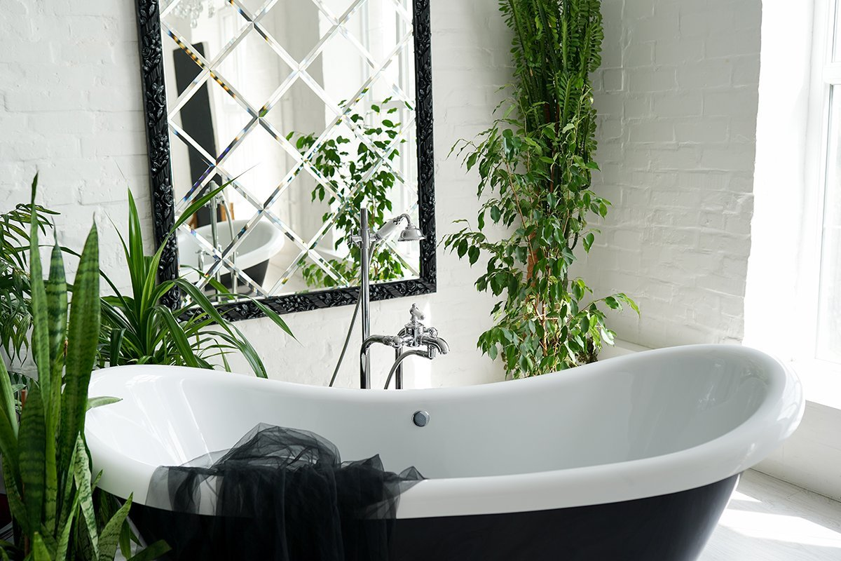 Bathroom with many green plants