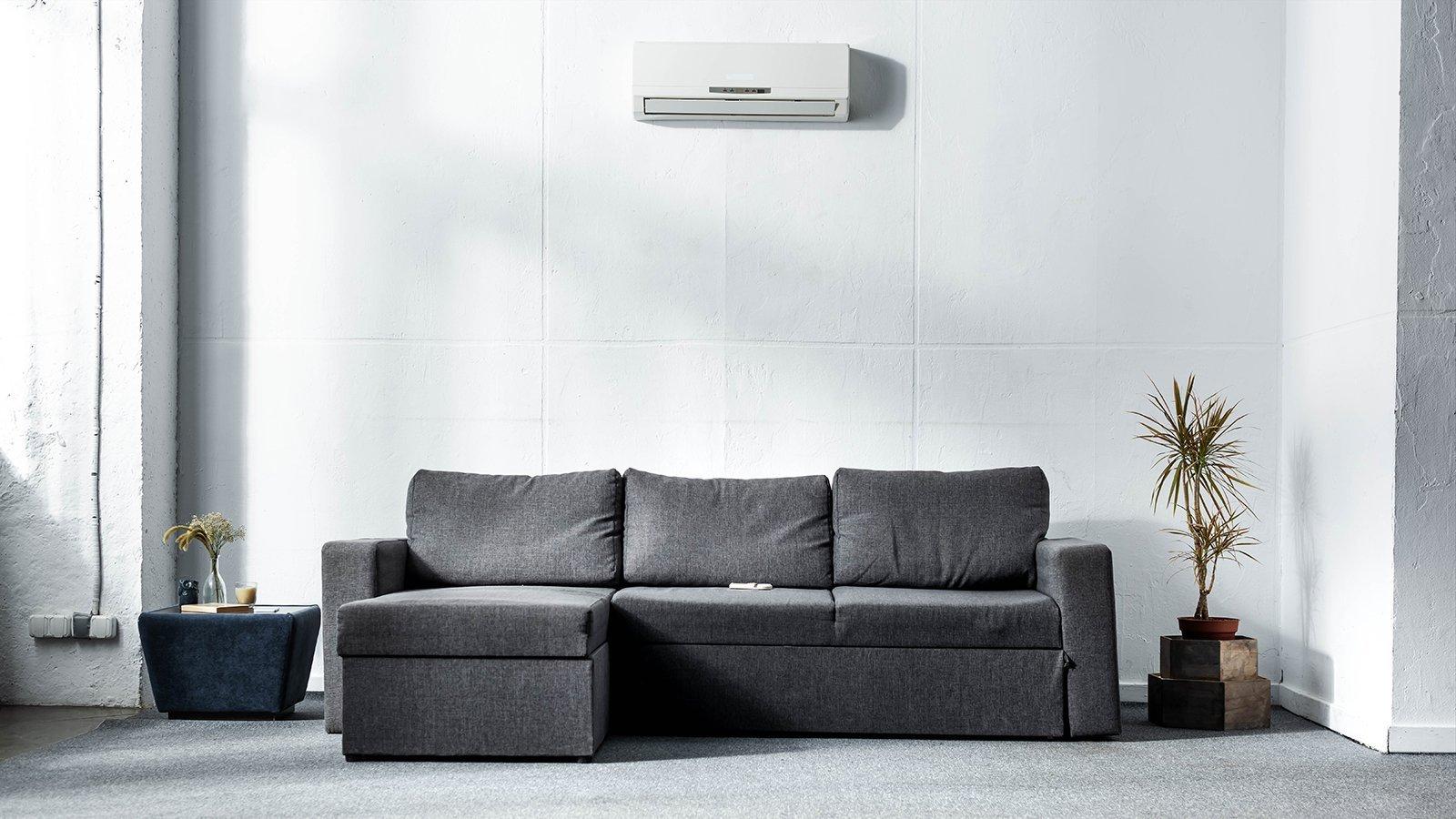 grey sofa near green plants in modern living room